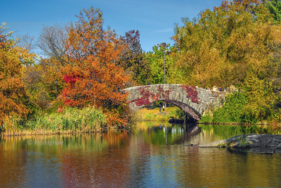 NYC Gapstow Bridge Autumn Colors