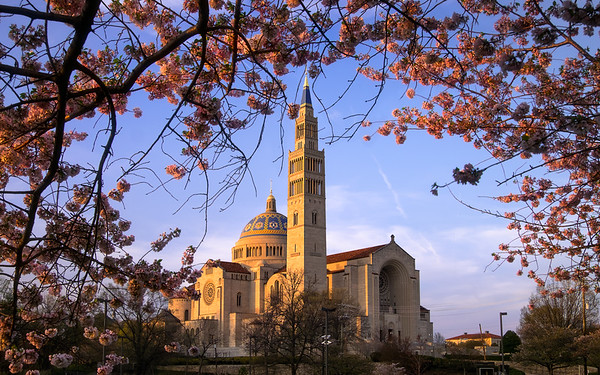 Basilica of the National Shrine of the Immaculate Conception – Washington, D.C.