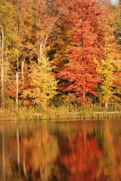 North Chagrin Autumn  5