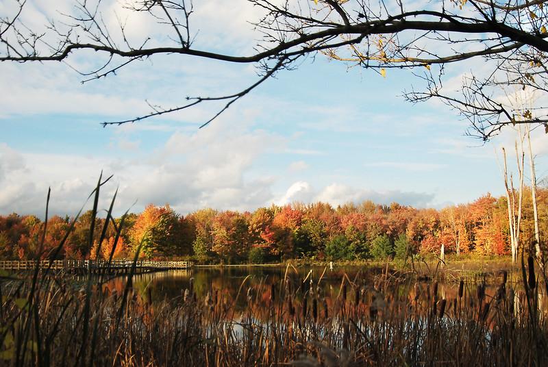 North Chagrin Autumn  9