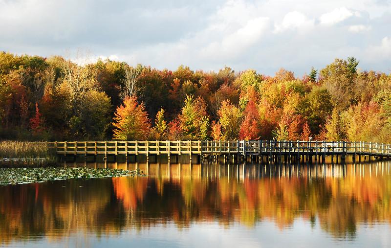 North Chagrin Autumn  10