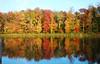 North Chagrin Autumn  6