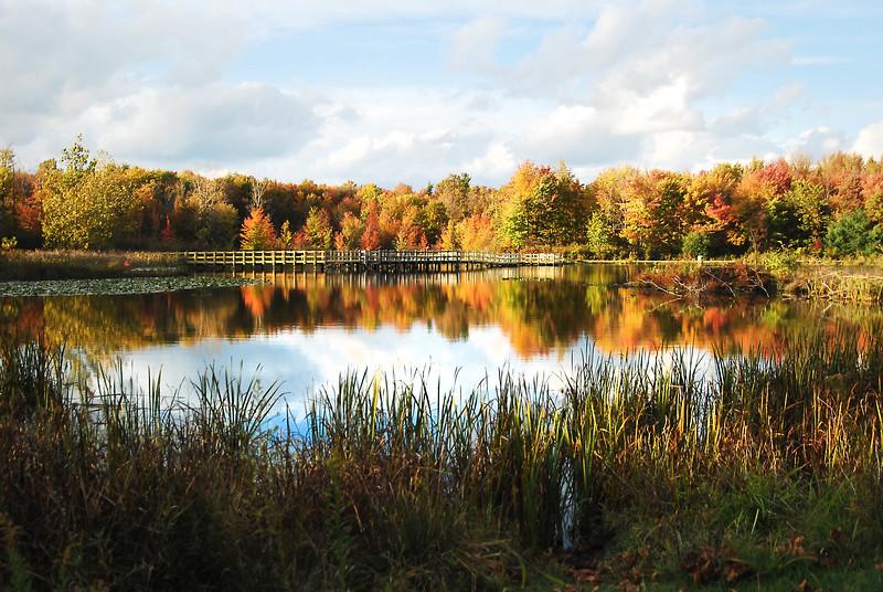 North Chagrin Autumn  3