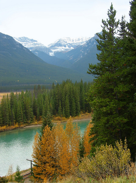Backswamp (Bow River) from Bow Valley Parkway viewpoint<br /> Banff National Park, Alberta, Canada