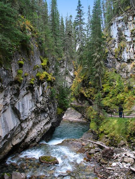 Johnston Creek flowing through Johnston Canyon gorge<br /> Banff National Park, Alberta, Canada