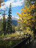 Marsh Trail at Cave & Basin National Historic Site<br /> Banff Townsite, Alberta, Canada