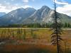 Marsh at Cave & Basin National Historic Site<br /> Banff Townsite, Alberta, Canada