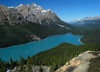 Peyto Lake from trail summit<br /> Banff National Park, Alberta, Canada
