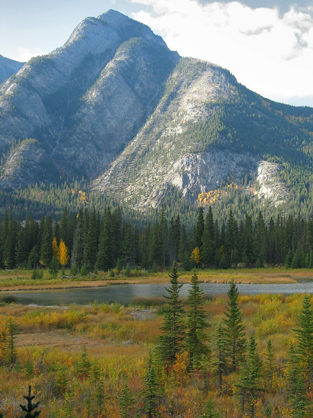 Marsh along Bow River at Cave & Basin National Historic Site<br /> Banff Townsite, Alberta, Canada