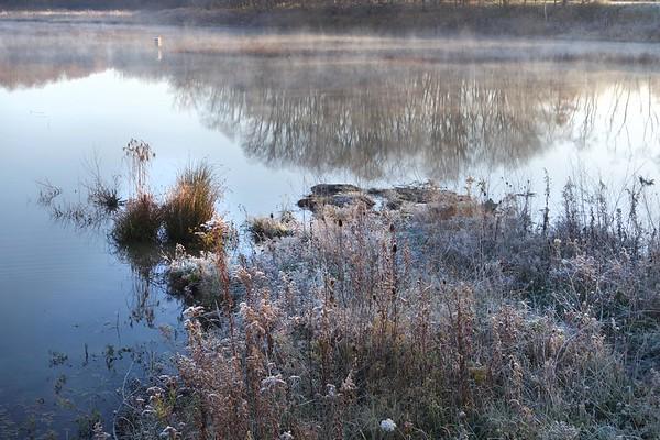 Marsh November Frost and Fog 6