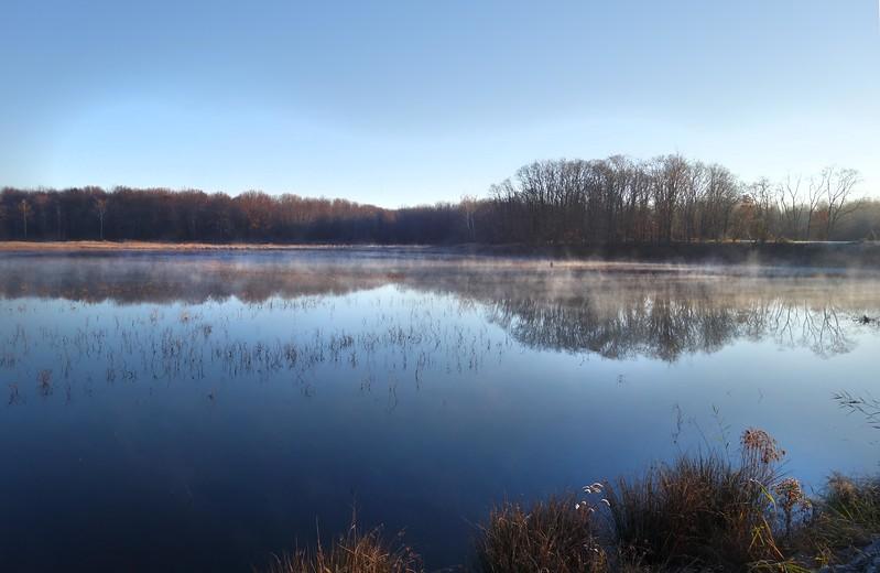 Marsh November Frost and Fog  1