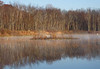 Marsh November Frost and Fog 4