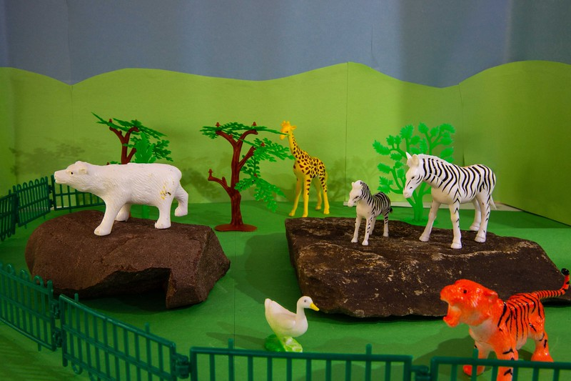 27 - no sheet - Zebras - light from front (1 of 1)