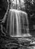 Jackson Falls , Prince Edward County,May 05 2019, Canon EOS R, ..8 sec, F11,  ISO 50