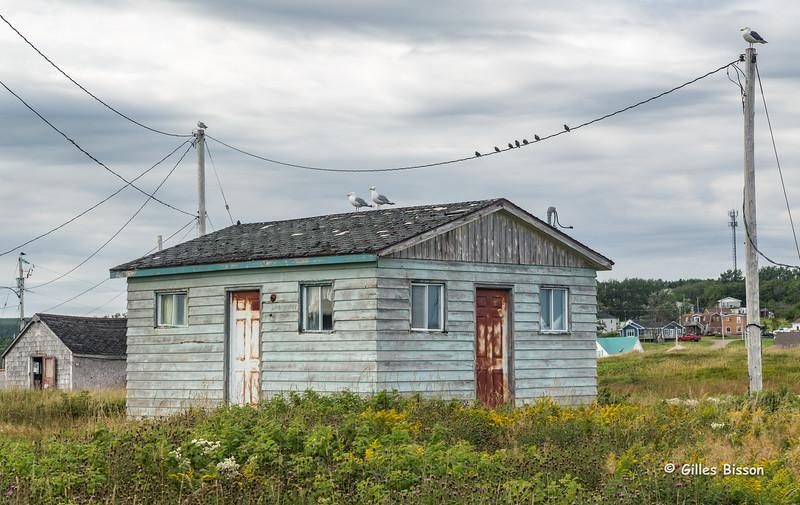 Neils Harbour, Cabot Trail, Cape Breton, Nova Scotia, Sept 02, 2015, Canon 6D, 24-105mm, 1/20,F14.0, ISO 50