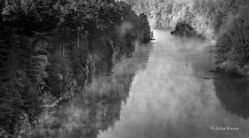 French River - Black & White