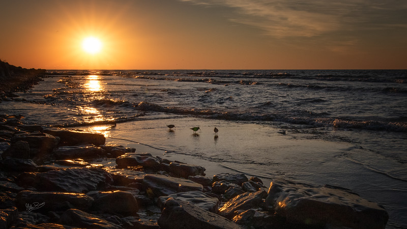 Sunrise at Presqu'ile Provincial Park, October 19,2018, Canon 7D Mark II, 20mm, 1/800, F16, ISO 400