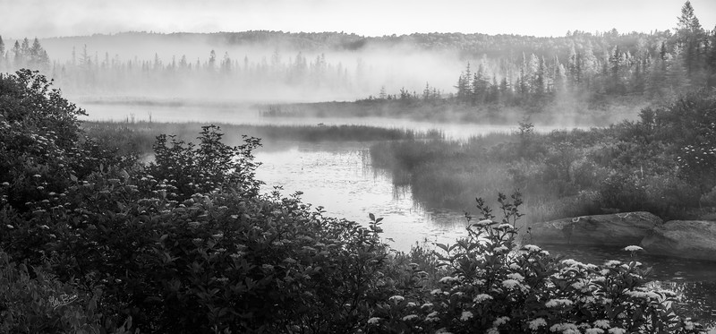 Early morning fog, Algonquin Park, June 22, 2018, Canon 6D, 24-105, 1/4 sec, F16, ISO 50
