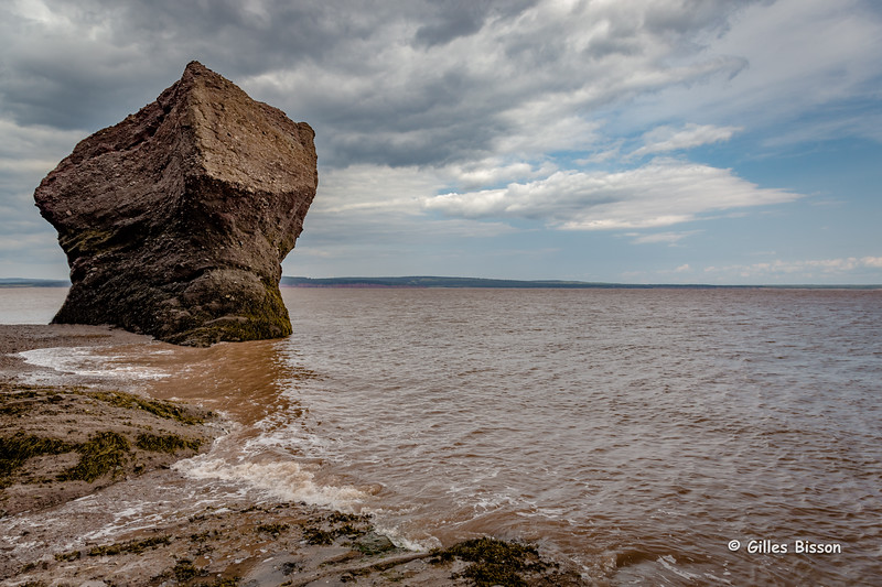 Hopewell Rocks, Bay of Fundy, New Brunswick, 2015, August 30 2015, Canon 6D, 1/250, 24-105mm, F8.0, ISO 400