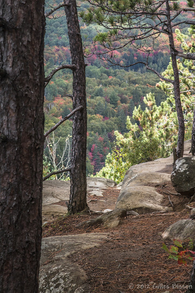 Lookout trail in Algonquin Park, September 25 2012