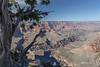 Grand Canyon, South Rim, Arizona, April 05 2013, #1026