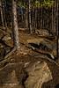 Lookout Trail, Algonquin Park, Sept 26 2013, #8072, Canon 6D-1/5sec-F22-ISO50-LR5