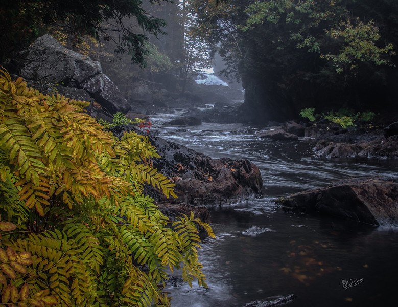 Landscape HIgh Falls, Scootamatta River, October 09, 2018, Canon 7D, Mark II, 1/4 sec, F14, ISO 100