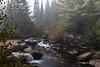 Mew Lake Trail, Algonquin Park, Sept 28 2013,#8609, Canon 6D-.6 sec -F22-ISO50-LR5