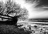 Black and white Landscape, Presqu'ile Provincial Park, October 19, 2018, Canon 7D MarkII, 20mm, .5 sec, F14, ISO 100