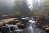 Mew Lake Trail, Algonquin Park, Sept 28 2013,#8604, Canon 6D-.5sec -F22-ISO50-LR5