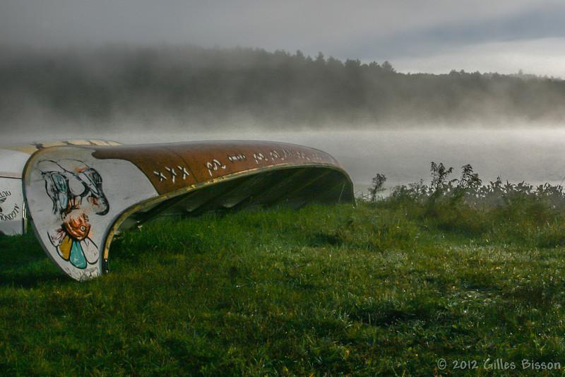Landscape,September 27 2012, Algonquin Park, Opeongo Road