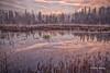 Early morning landscape,Algonquin Park, Sept 28 2014, Canon 6D ,1.0sec,F16,ISO50