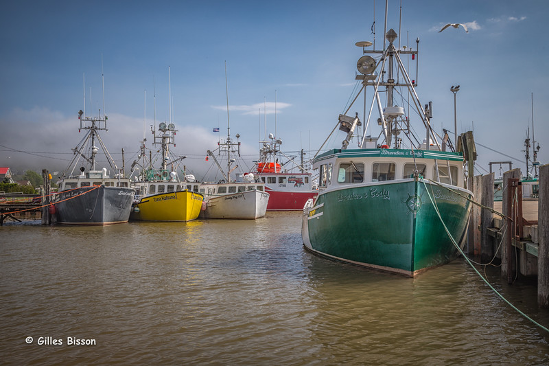 Alma harbour at high tide, Bay of Fundy, New Brunswick, Sept 30 2015, Canon 6D, 24-105mm, 1/80, F 8.0, ISO 50