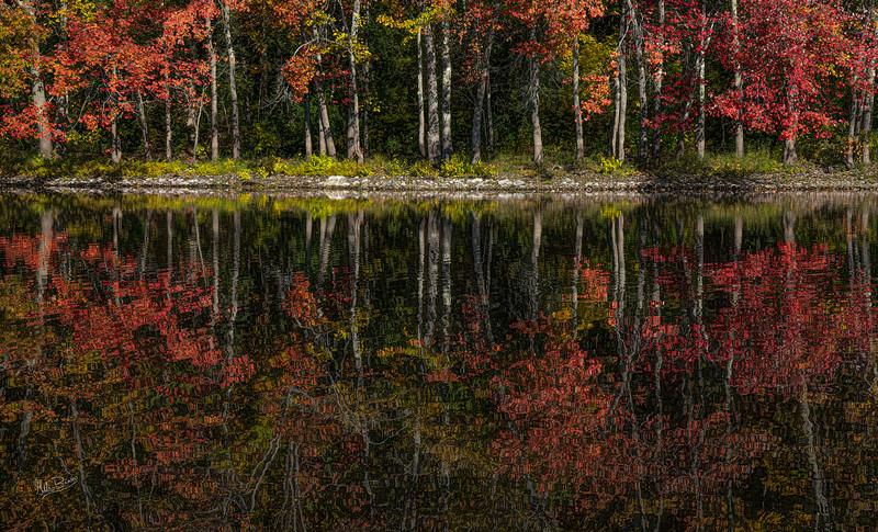 Fall Colours, Moira River, October 08, 2019, Canon EOS R, 1/200, F14, ISO 200