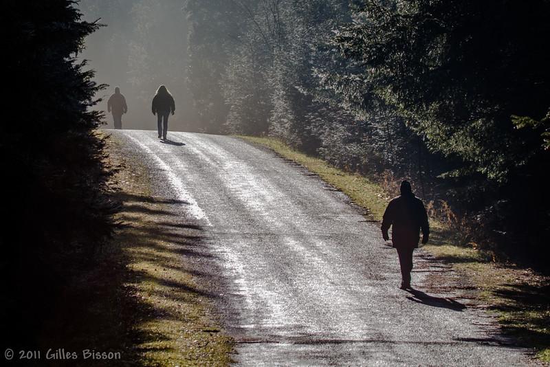 Walkers in Vanderwater Conservation Area, December 22 2011