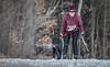 Marmora Sled Dog Races, January 31,2015, Marmora, Canon 7D mark2, 100-400 mm, 1/1250,F8.0,ISO500