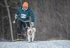 Skijoring at Marmora Sled Dog Races, January 31,2015, Marmora, Canon 7D mark2, 100-400 mm, 1/1250,F8.0,ISO500
