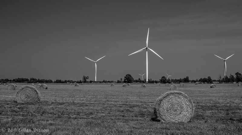 Wolf Island wind turbines, July 20 2011