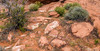 Valley of Fire, Nevada, April 08 2013, #1920