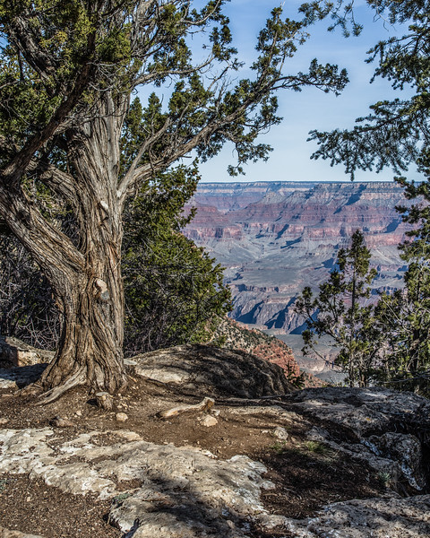 Grand Canyon, South Rim, Arizona, April 05 2013, #1224