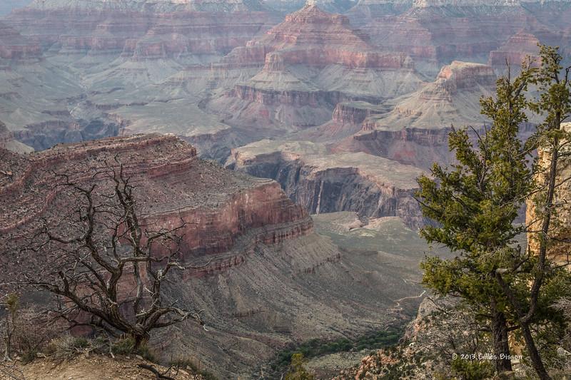 Grand Canyon, South Rim, Arizona, April 05 2013, #1054