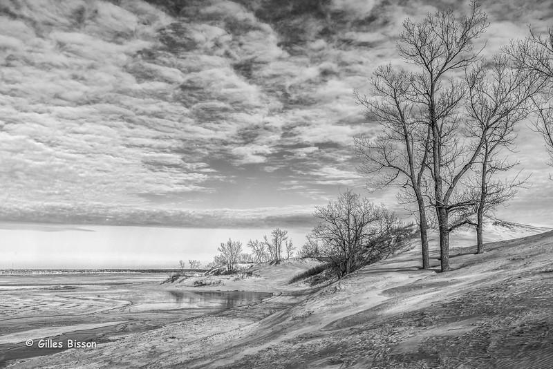 Sandbanks Provincial Park, Sand Dunes, Dec 20 2014, Canon 6D, 24-105mm, 1/100,F9,ISO 125