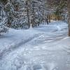 Mew Lake trail
