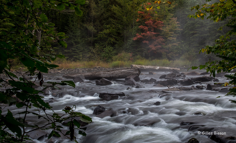 Tea Lake Dam rapids, Algonquin Park, Sept 28, 2016, Canon 6D, .04 sec, F16, ISO 50