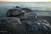 Early morning landscape, Matane, Gaspe Peninsula, Quebec, Sept 03, 2016,  Canon 6D, 24mm, 1.6 sec, F11, ISO 50
