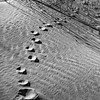 Black & White, foot prints in Sand Dunes at Sandbanks Provincial Park, January 15, 2017, Canon 6D, 47mm, 1/13 sec, F16, ISO 50