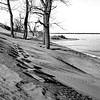 Sand Dunes in black and White at Sandbanks Provincial Park, January 15, 2017, Canon 6D, 28mm, 1/20 sec, F16, ISO 50