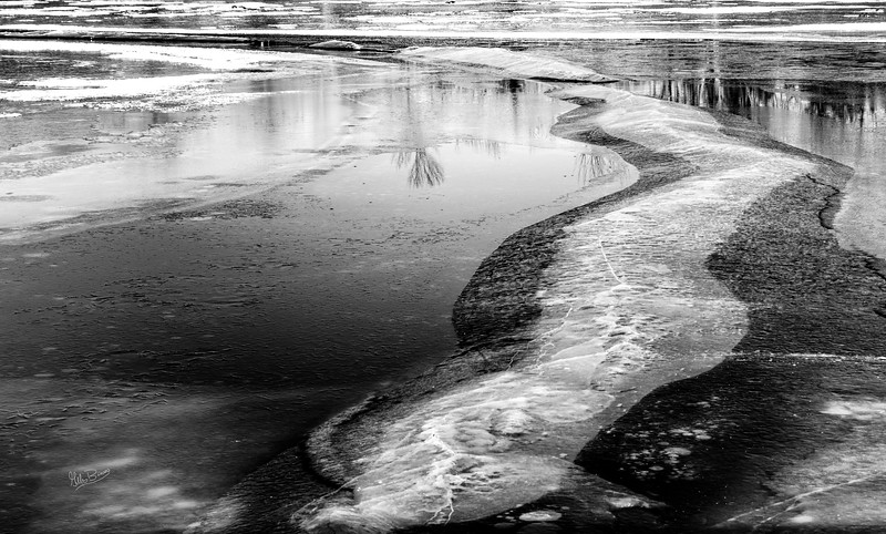 Ice formation in Black and White , Frink Centre Conservation area, January 12, 2019, Canon EOS R, 1/20 sec, F14, ISO 50