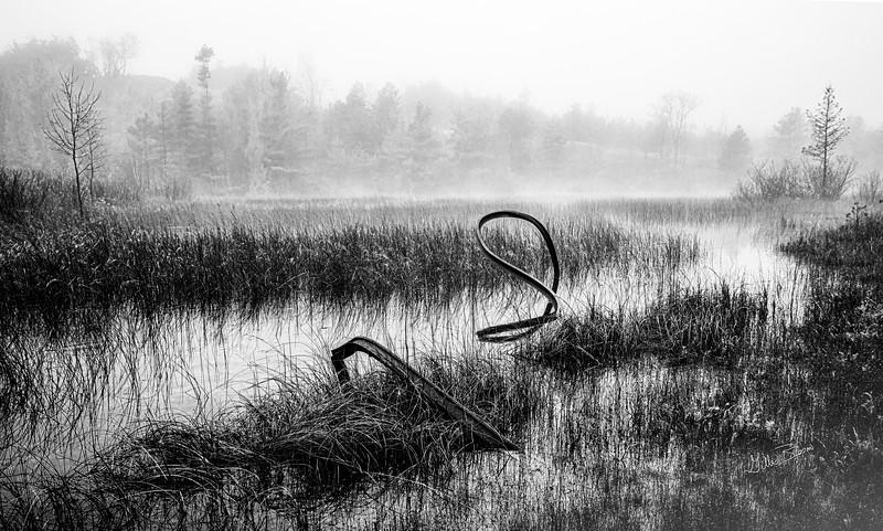 Black & White landscape, Sandbanks Provincial Park, May 26, 2019, Canon EOS R, 1/60, F11, ISO 50