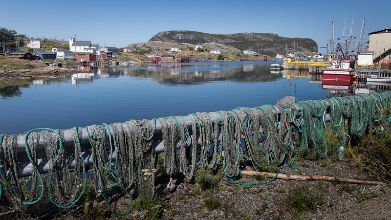 Salvage, Newfoundland, August 26, 2019, Canon EOS R, 1/60, F13, ISO 125